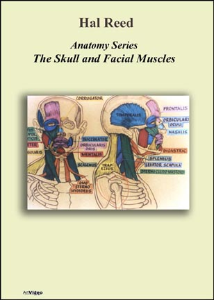 Reed, Hal: AN0102 - Skull &amp; Facial Muscles 