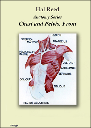 Reed, Hal: AN0708 - Chest and Pelvis Front