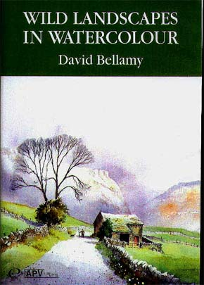Bellamy, David: BE6 - Wild Landscapes in Watercolor