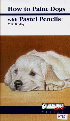 Bradley, Colin: CB05 - Labrador Puppy w/ Pastel Pencil
