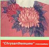 Feazle, Georgia: GF03 - Chrysanthemums