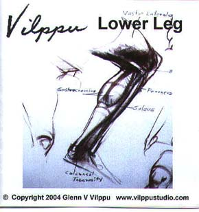 Vilppu, Glenn: GV27 - Lower Leg Anatomy