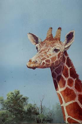 Yarnell, Jerry: JY8939 - Giraffe
