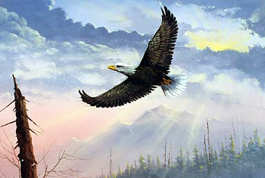 Yarnell, Jerry: JY8979 - Eagle in Flight