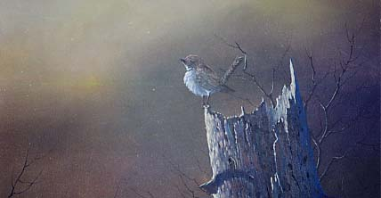 Yarnell, Jerry: JY8997 - Perched on a Stump - Bird