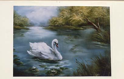 Jenkins, Kathwren: KJ207 - Swan Lake