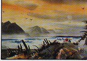 Landry, Robert: RL04 Sunset Beach