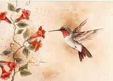 Nelson, Sherry: SN01 - Hummingbird