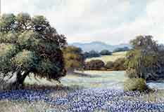 Blackman, William: WB401 - Springtime Bluebonnets