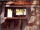 Szabo, Zoltan: ZS05 - Old Wooden Shed